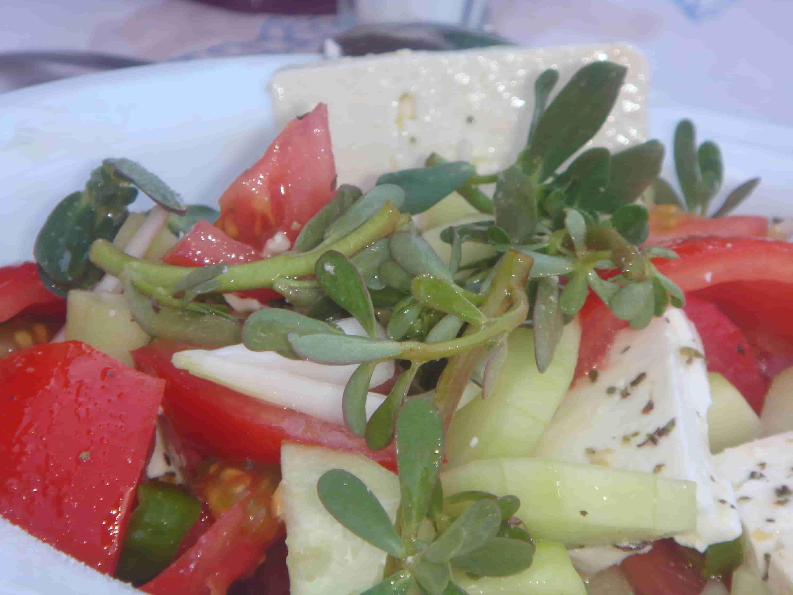 verdure-min
